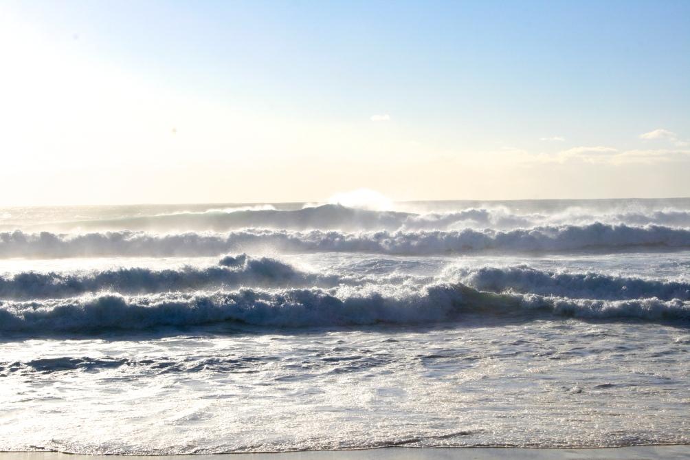 RH_Bondi Beach